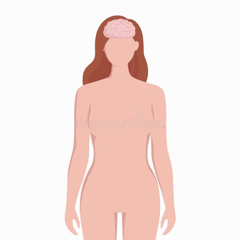 Cervello sull'illustrazione medica di vettore della siluetta del corpo della donna isolata su fondo bianco L'organo interno umano illustrazione di stock