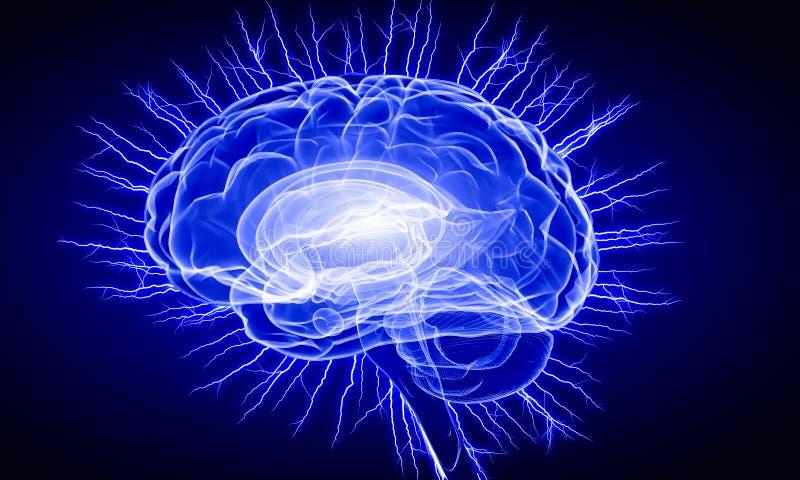 Cervello umano di Digital royalty illustrazione gratis