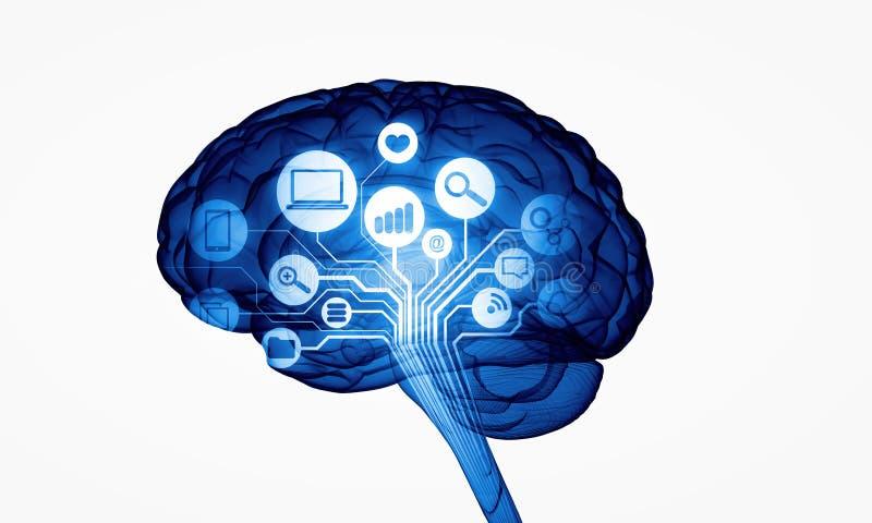 Cervello umano di Digital illustrazione vettoriale