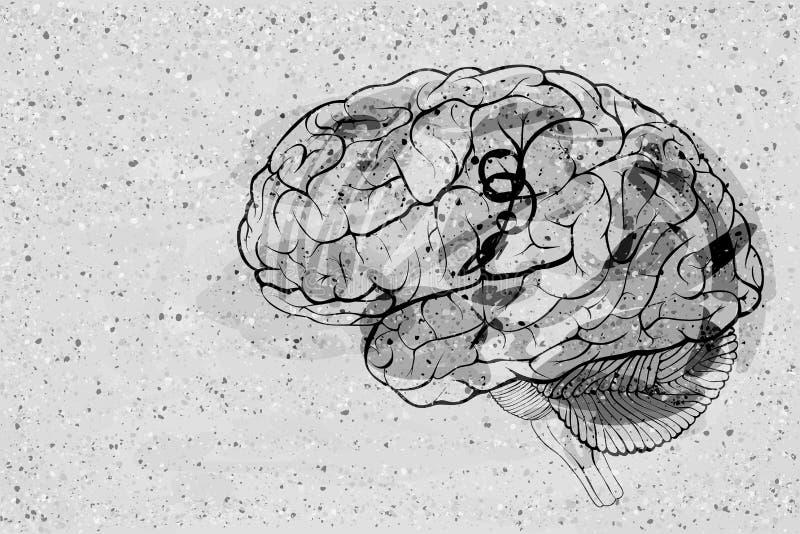 Cervello umano grungy di stile dei graffiti illustrazione di stock