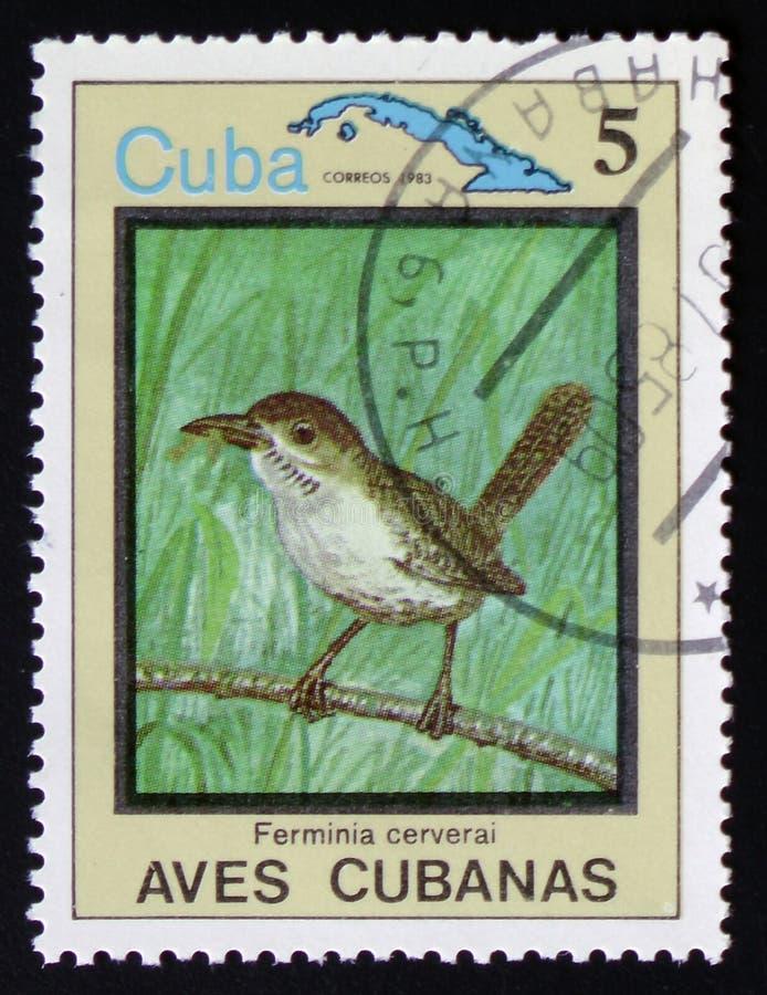 Cerverai di Ferminia e mappa di Cuba, circa 1983 immagine stock
