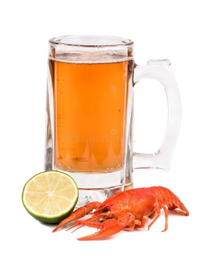 Cerveza con los cangrejos fotografía de archivo libre de regalías