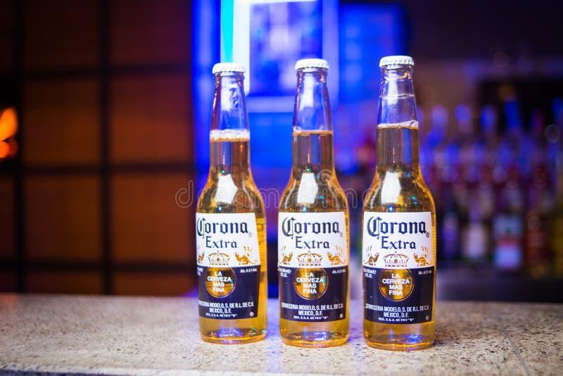 Cerveza de Corona Extra fotos de archivo