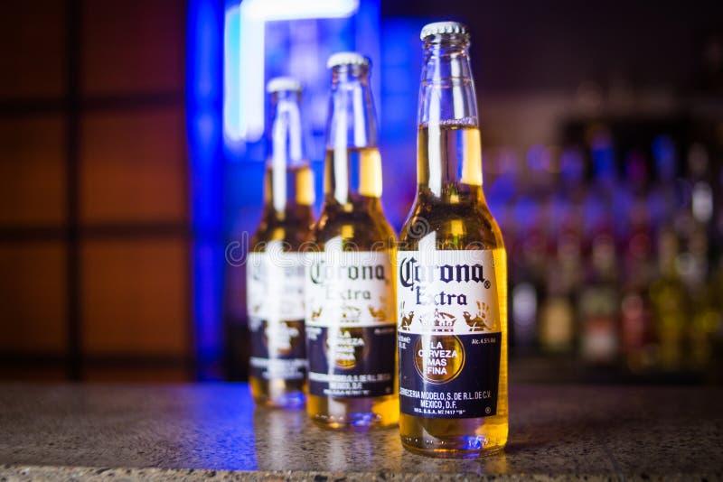 Cerveza de Corona Extra foto de archivo libre de regalías
