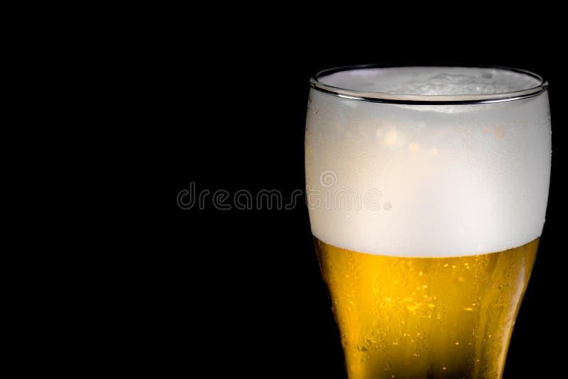 Cerveza de cristal en fondo negro imagen de archivo libre de regalías