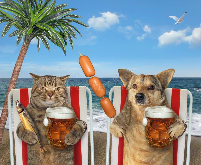 Cerveza de la bebida del perro y del gato en ociosos foto de archivo libre de regalías
