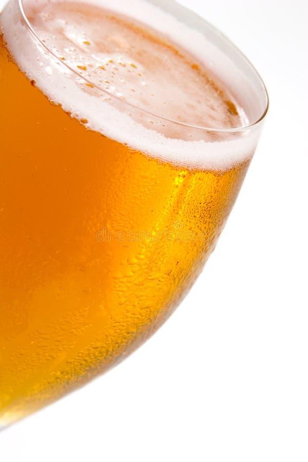 Cerveza dorada fría # 001 - fotografía de archivo