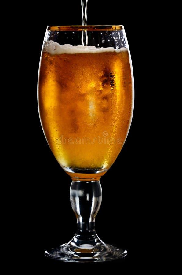 Cerveza en el vidrio en un negro imagen de archivo libre de regalías