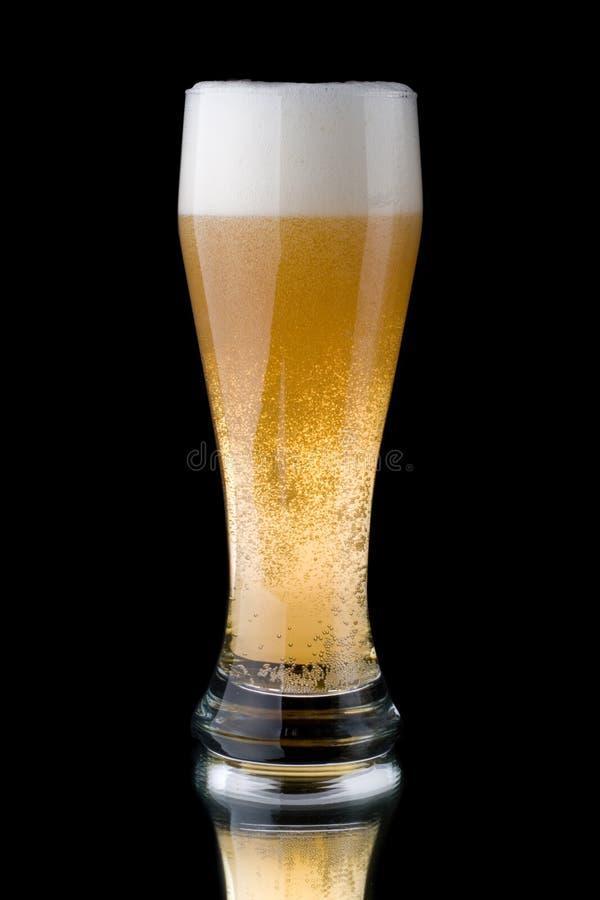 Cerveza espumosa fresca fotos de archivo libres de regalías