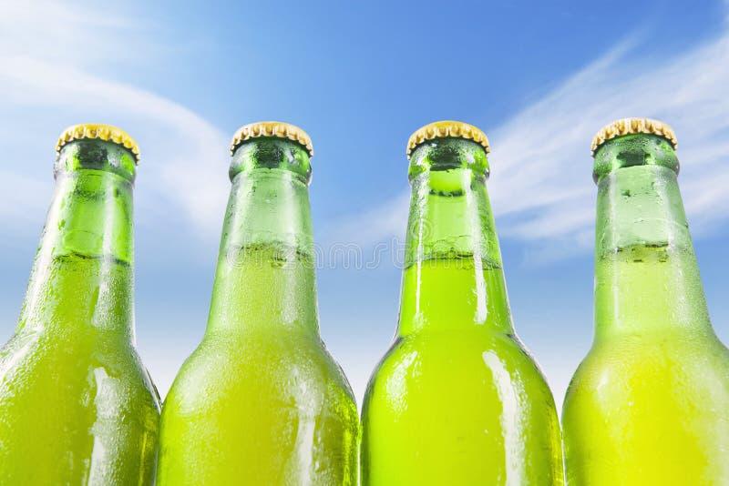 Cerveza fresca en las botellas cubiertas de rocio imagen de archivo libre de regalías