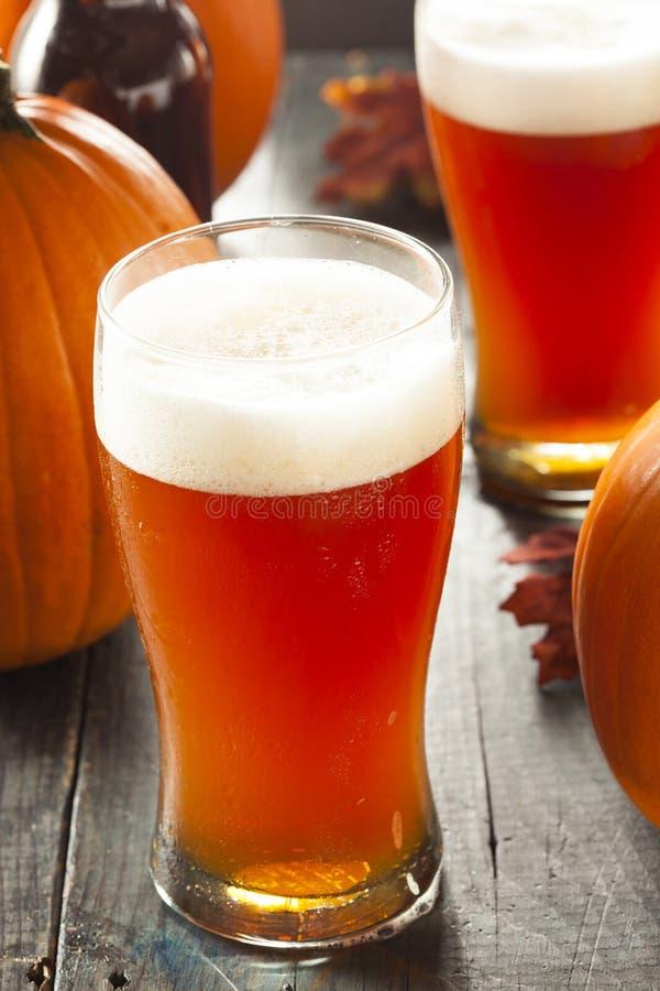 Cerveza inglesa anaranjada espumosa de la calabaza imagenes de archivo