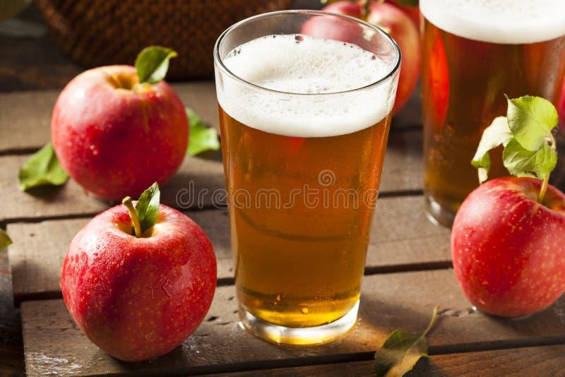 Cerveza inglesa dura de la sidra de Apple imagenes de archivo