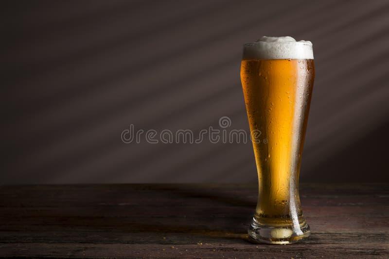 Cerveza ligera fría fotografía de archivo libre de regalías