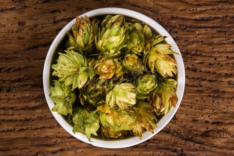Cerveza que elabora los conos de salto de los ingredientes en el cuenco blanco en fondo de madera Concepto de la cervecería de la fotografía de archivo