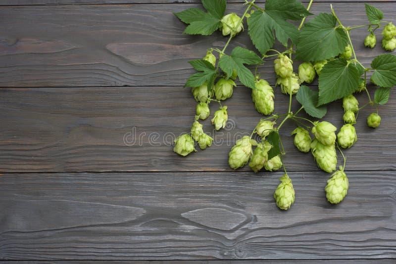 Cerveza que elabora los conos de salto de los ingredientes en la tabla de madera oscura Concepto de la cervecería de la cerveza F fotos de archivo libres de regalías