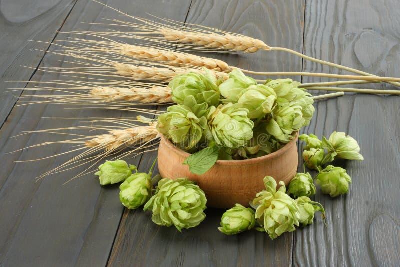 Cerveza que elabora los conos de salto de los ingredientes en oídos de madera del cuenco y del trigo en fondo de madera oscuro Co fotos de archivo