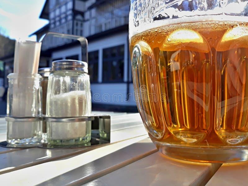 Cerveza y sal imagen de archivo libre de regalías