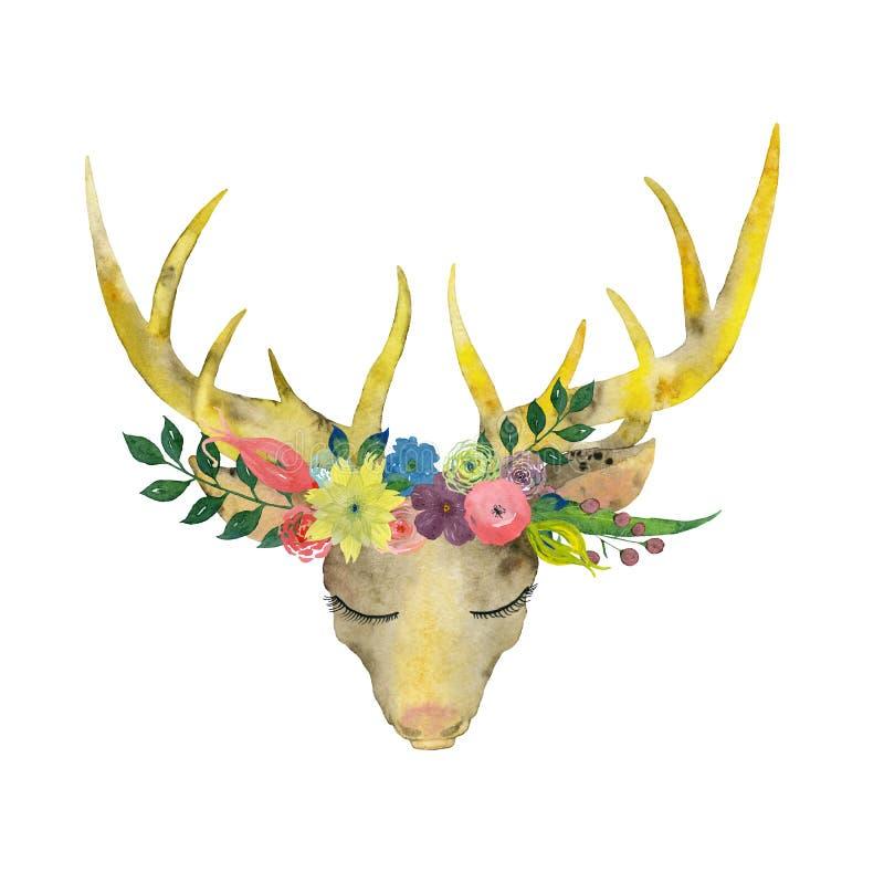 Cervi dell'acquerello su un fondo bianco illustrazione di stock