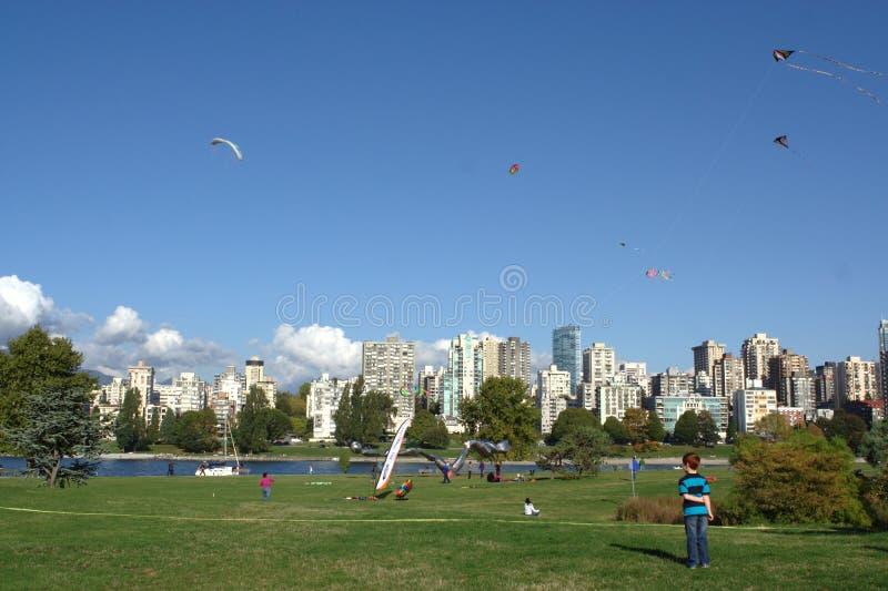 Cervi volanti a gioco, mosca di divertimento di BCKA fotografie stock