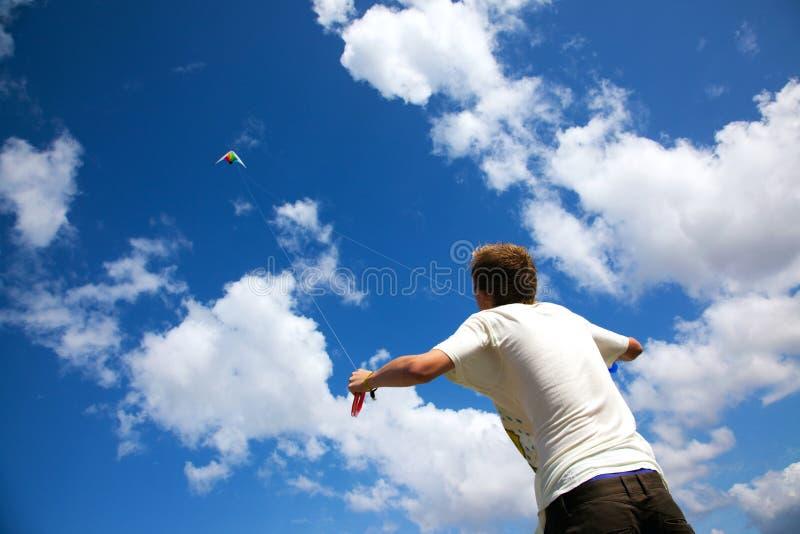 Cervo volante fotografia stock libera da diritti