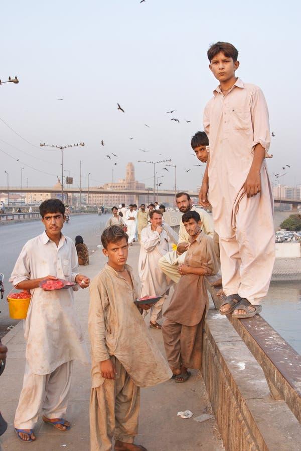 Cervo volante che si alimenta, Karachi, Pakistan immagini stock libere da diritti