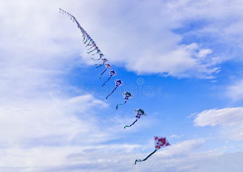 Cervo volante cinese fotografia stock libera da diritti