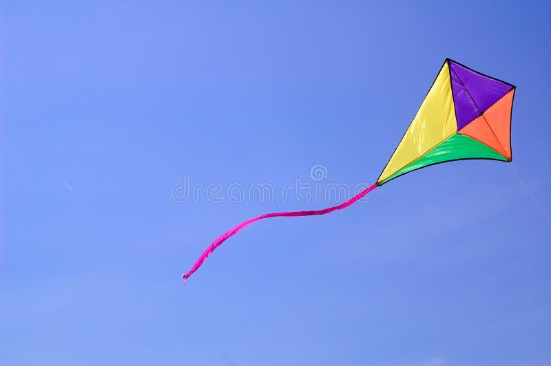 Cervo volante contro cielo blu fotografia stock