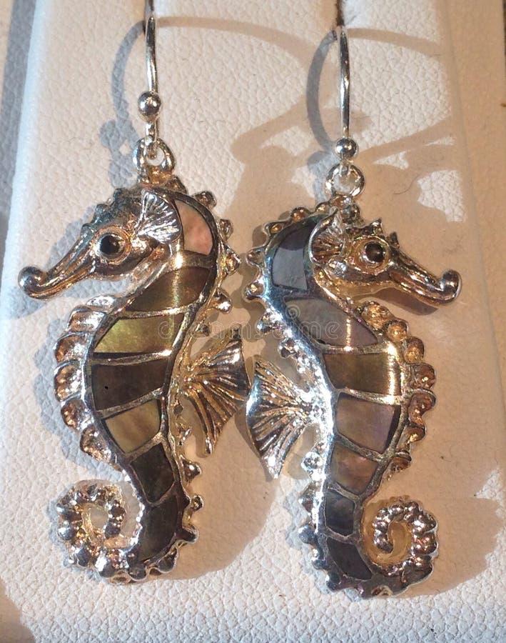 Cervo volante del mare Horse immagini stock libere da diritti
