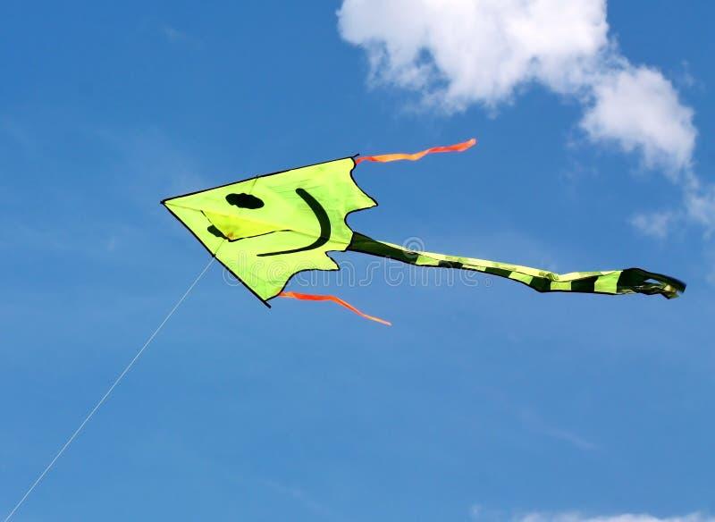 Cervo volante di volo nel cielo blu immagine stock libera da diritti