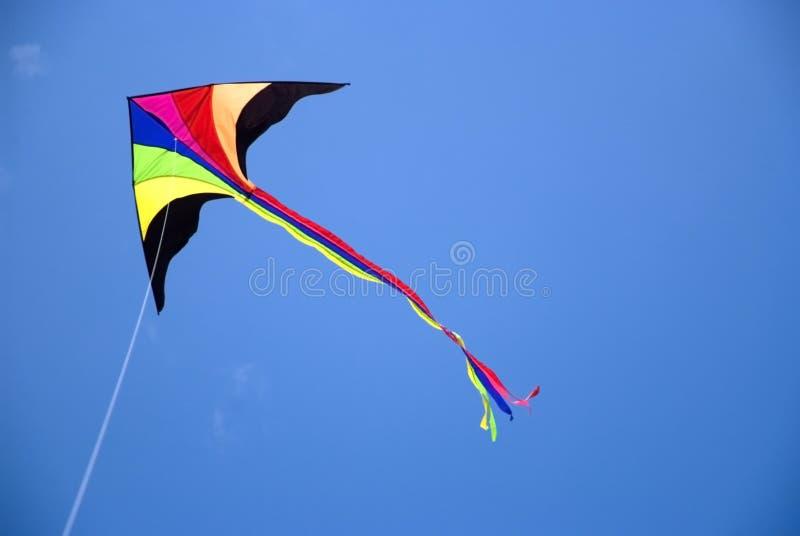 Cervo volante durante il volo fotografie stock libere da diritti