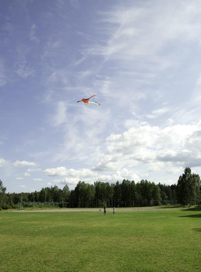 Cervo volante nel cielo fotografia stock