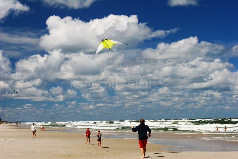 Cervo volante sulla spiaggia immagini stock libere da diritti