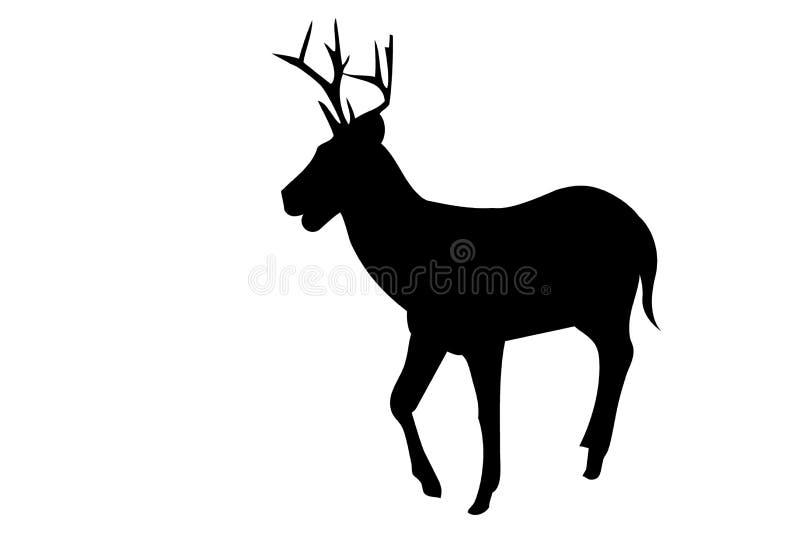 Cervos da silhueta no fundo branco ilustração do vetor