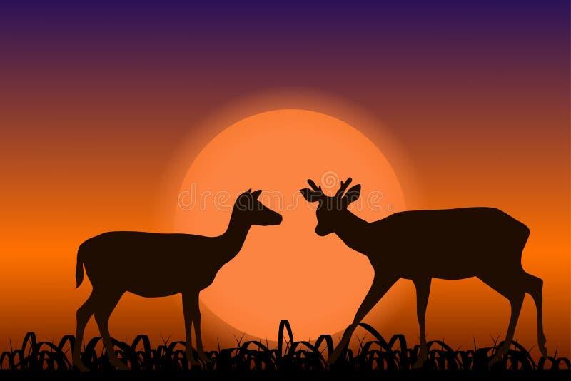 Cervos de Sika com chifres Silhuetas pretas no por do sol Paisagem africana ilustração royalty free