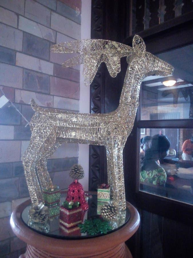 Cervos dourados fotografia de stock royalty free