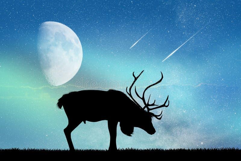 Cervos e aurora borealis ilustração do vetor