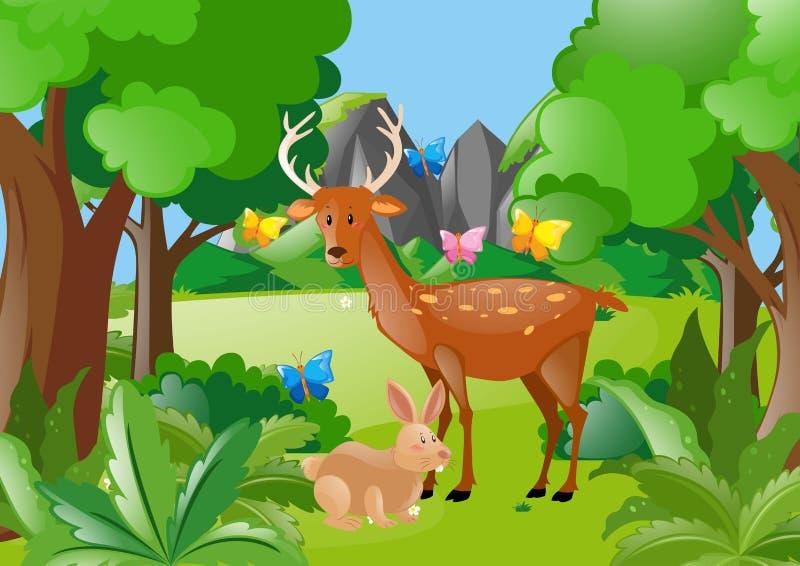 Cervos e coelho nas madeiras ilustração stock