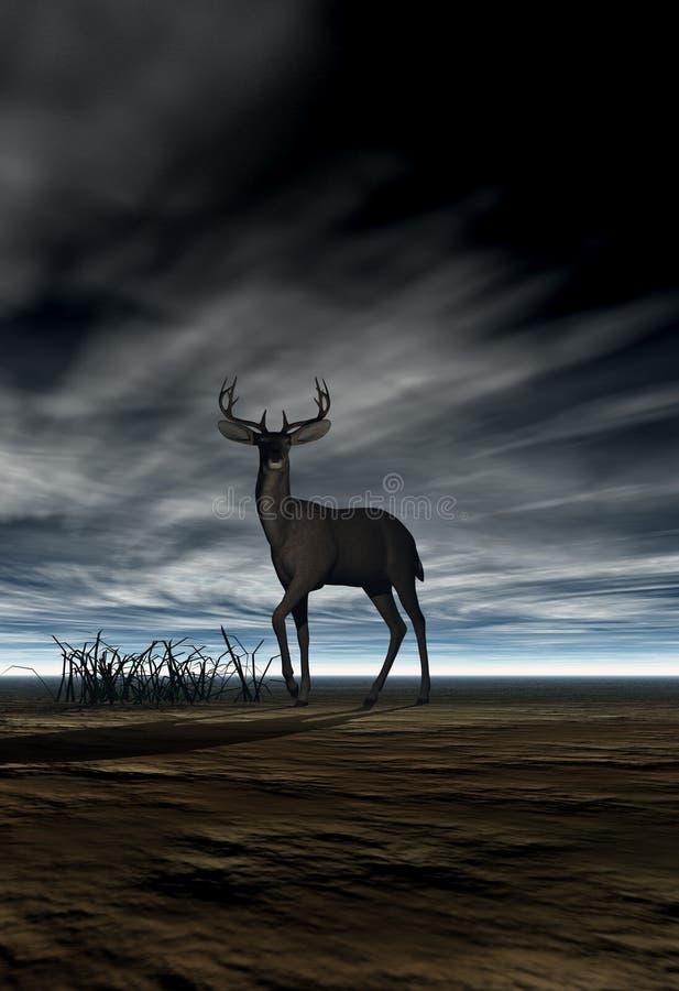 Cervos (fanfarrão) imagem de stock