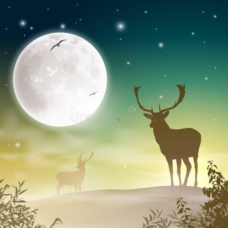 Cervos masculinos do veado ilustração stock