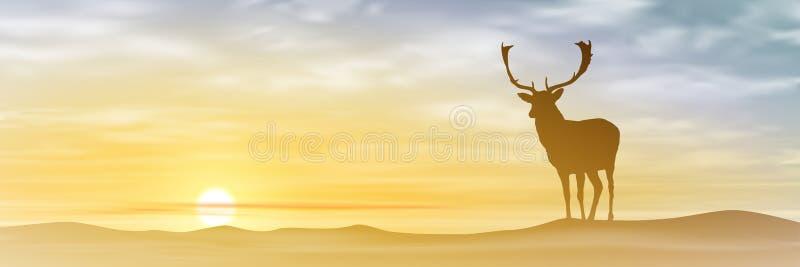 Cervos masculinos do veado ilustração do vetor