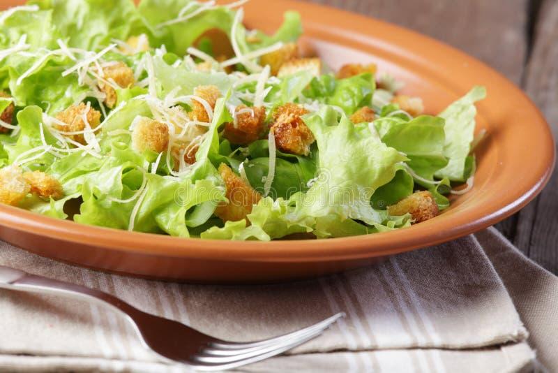 cesar салат стоковая фотография