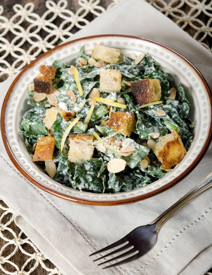 Cesar Almond Crouton Salad fotos de stock