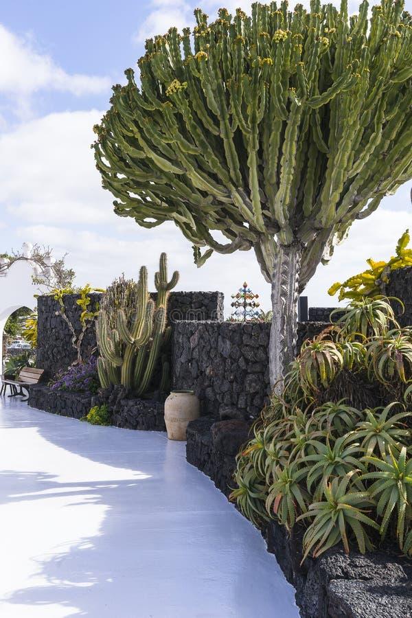 Cesar Marique Foundation, Lanzarote image stock