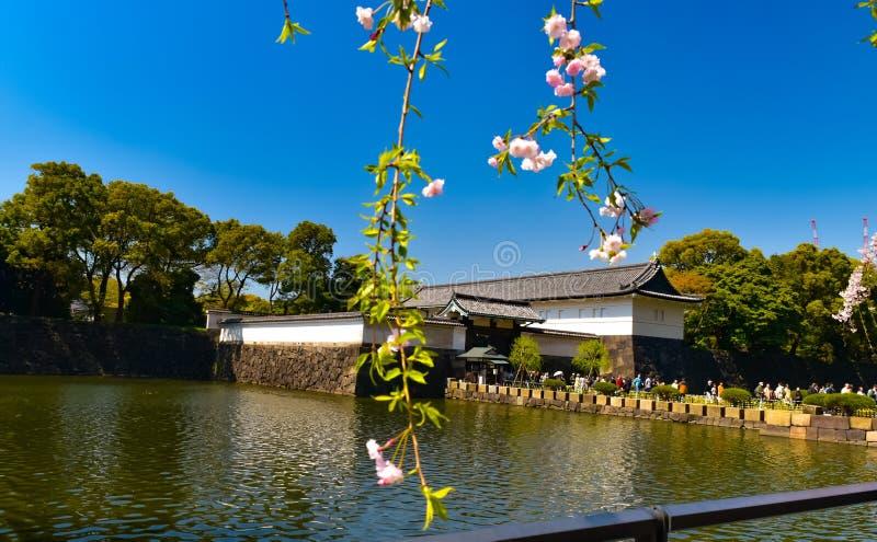 Cesarski pałac widok w wiośnie Japan, Tokio obraz royalty free