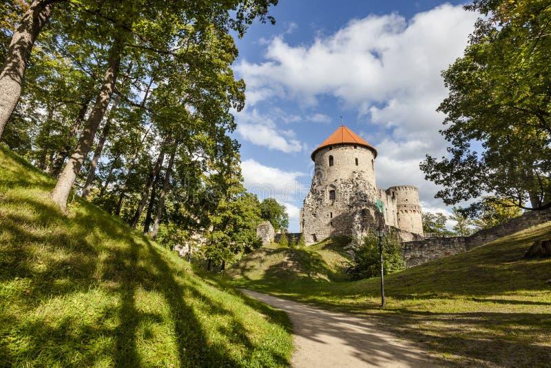 Cesis城堡,拉脱维亚废墟  免版税库存图片
