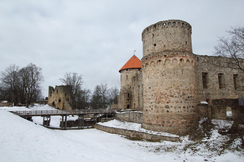 Cesis城堡 库存照片