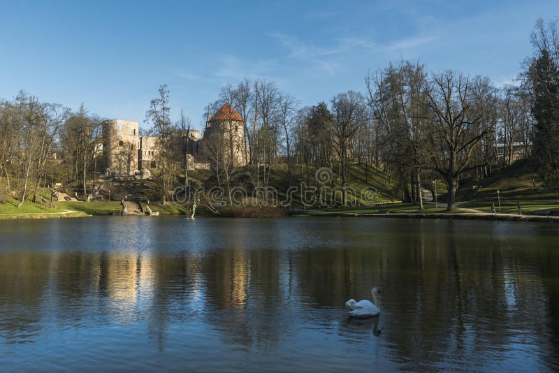 Cesis城堡 免版税库存图片