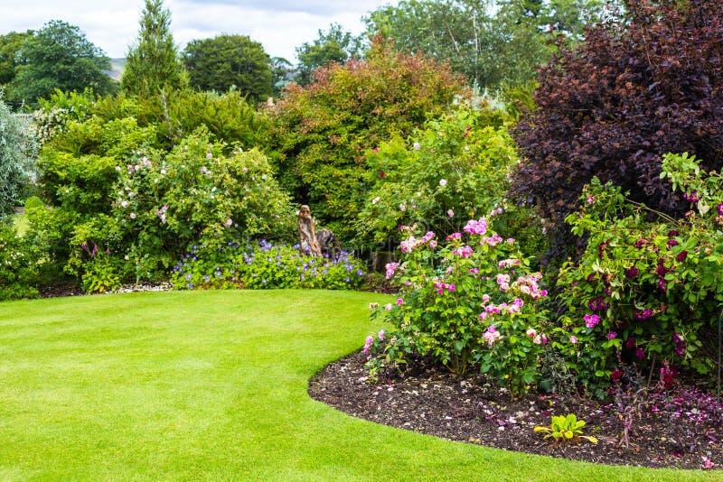 Cespugli di rose rosa chiaro adorabili in giardino for Cespugli giardino