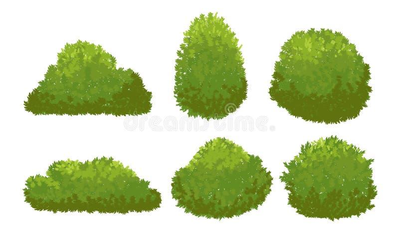 Cespugli verdi del giardino Arbusto del fumetto ed insieme di vettore del cespuglio isolato su fondo bianco royalty illustrazione gratis