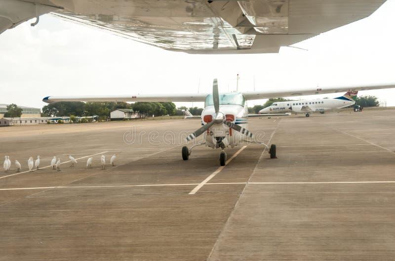Cessna i Sydafrika royaltyfria foton